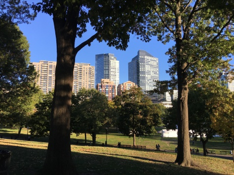 City view from the park.